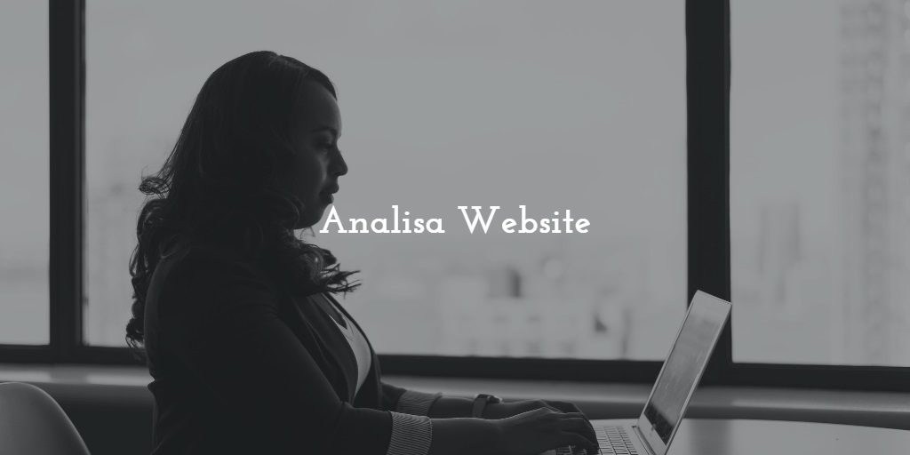 analisa website